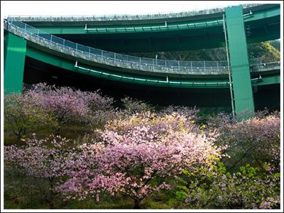 ingenieria-en-la-red-kawazu-nanadaru-loop-bridge-09.jpg
